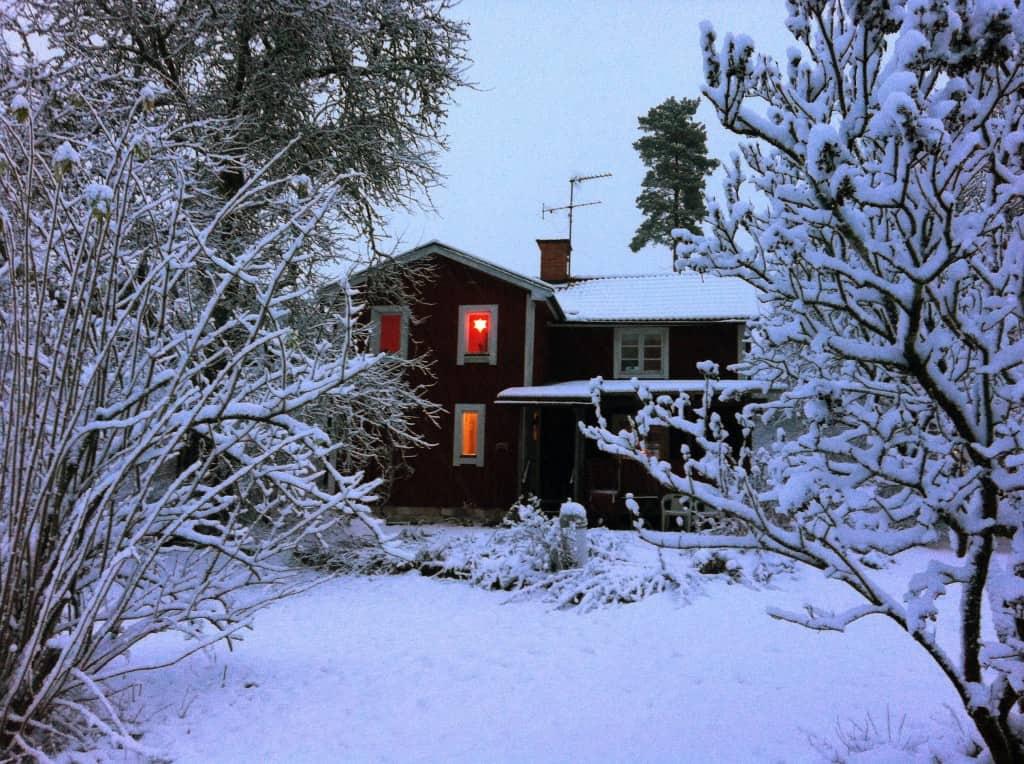 Ett lager med bomull har lagt sig över hus, jord och grenar.