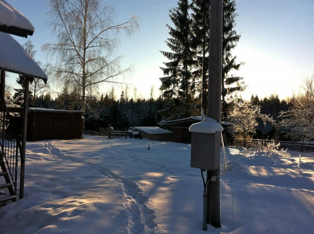 Det är vackert även på vintern. Tre granar vågade maskinföraren inte ta med skördaren och de visar hur granväggen en gång stod i vägen för solen. De togs istället med motorsåg när skotaren var här.