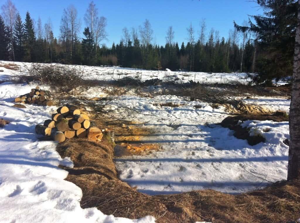 Träd blir stora och otympliga när de ligger ner. Dessutom tar de väldigt mycket plats. Tror det är därför man förvarar träden stående i skogen.