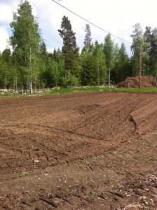 Det är svårt att få till en snygg harvning på ett så här litet fält. Det går knappt att unvika att harven sladdar när det blir täta vändningar.