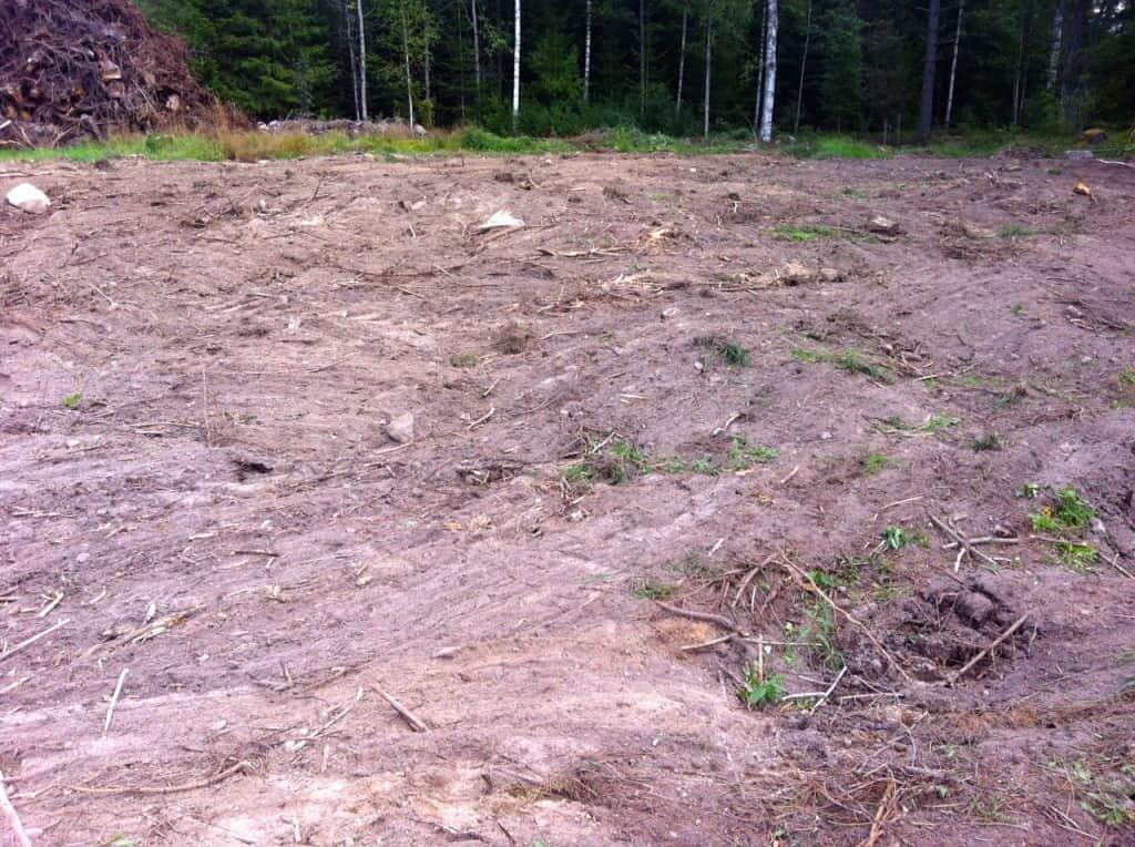 Ingen vacker åkermark ännu. Men jag ser ändå stora förbättringar. I vintras så stod det granskog här men nu börjar min nyodling ta form.