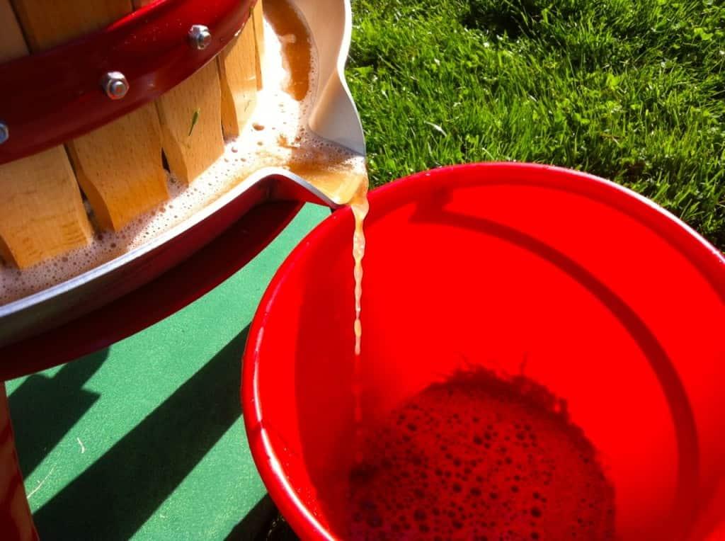 Med en fruktpress gör man must av överskottsäpplena. En hink med äpple ger ungefär en liter must. Hållbarheten är inte särskilt god men den går att frysa.