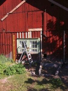 Dåligt trä på ladugården bryter jag bort med kofoten och sen sågar jag till brädor i samma dimension. På strategiska ställen använder jag skruv för att dra ihop konstruktionen.