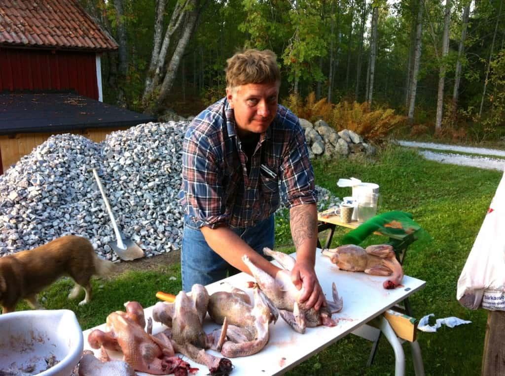 Sex tuppar fick sätta livet till. Massakern skedde strax utanför Vingåker och blev ett hyfsat blodigt spektakel. All slutade dock lyckligt utom för dessa tuppar som just förvandlats från djur till mat.