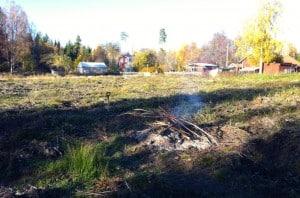 Det finns praktiskt taget obegränsat med brännbara rötter och ris på nyodlingen men jag fokuserade på att elda upp de större bitarna.