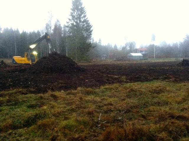 Dimman började lägga sig med grävaren fortsatte dra ihop stubbar och rötter i stora högar.