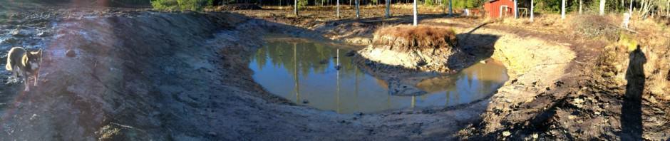 Det gick fort att gräva damm för kräftorna