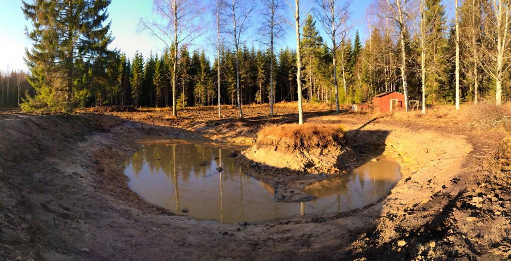 I början på november, när dammen var nygrävd var fanns det inte mycket vatten i den.