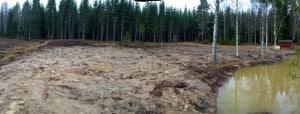 Här på skuggfältet har jag tänkt ha min kvanneodling. Över matjorden ligger nu ett lager lera från dammen som jag tänker plöja ner till våren.