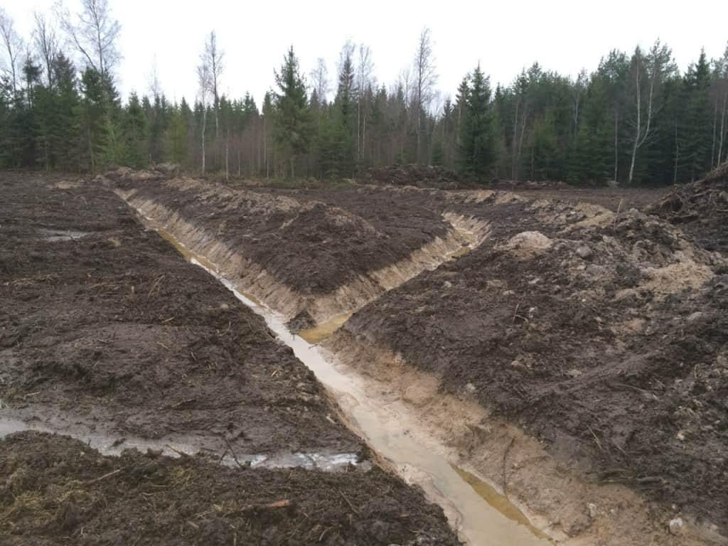 När grävmaskinen var här passade jag på att rensa dikena runt den blivande åkern och gräva ut för täckdikning. Ska lägga ner rör här så att jag förhoppningsvis blir av med några surhålor.
