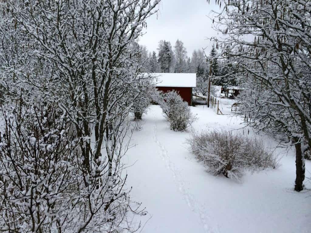 Knappt hade våren börjat kännas i luften förrän vintern slog tillbaka och åter gjorde utsikten från sovrumsfönstret till ett vinterlandskap.