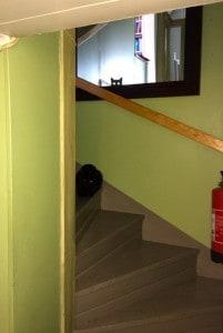 När jag och Pumah är nere i hallen är båda katterna nyfikna på vad som händer. Marlon vågar sig ner i trappan men Dallas föredrar att iaktta från övervåningen.