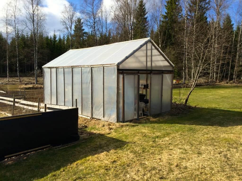 Växthuset är på runt 26 kvadratmeter – ett väl tilltaget odlingsutrymme. Nu gäller det bara att få det att fungera optimalt. Någon stans måste jag ställa mina chiliplantor.