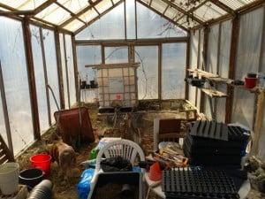 Växthuset är fyllt med blandad utrustning – både saker som hör dit och saker som borde stå någon annan stans.