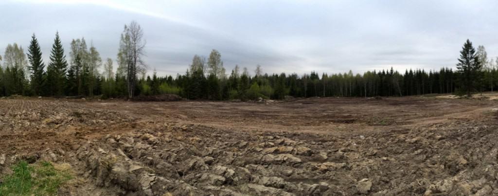 Från granskog till åker på drygt ett år. Marken är täckdikad och dikena längs kanterna är rensade. Dessutom har den fått närmare sju ton kalk.