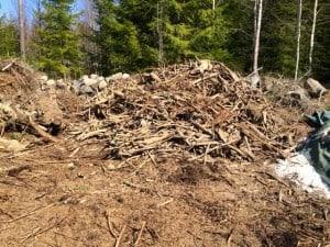 Det blev till slut en rejäl hög med rotbitar och gamla grenar. Nu får de ligga till sig vid åkerkanten och med lite tur åker de med när stubbarna ska flisas.