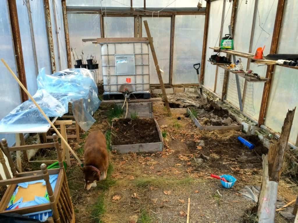 Stenplattorna i växthuset har börjat sätta sig och farmartanken med vatten riskerade att falla genom väggen. Nu har jag bestämt mig för att nöja mig med att fixa grunden där tanken ska stå. Att gräva ut hela växthuset får bli ett framtidsprojekt.