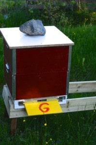 G-kupan består av hälften av bina från C. Kom på att jag inte hade tak så det räckte, em garderobshylla får duga så länge.