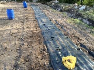 Första raden gjorde jag som planerat, men det blir för jobbigt att ligga på knä ute i fält och gräva genom markduk, sten och rötter med en liten planteringsspade.