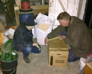 Hönsen packades ner i flyttlådor – och för säkerhetsskull satte vi en tejpsäkring på lådorna.