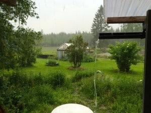 Jag fick drygt 10 mm regn på en timme och en åskknall varannan minut innan åskvädret passerat. Men jag är glad över varje mm.