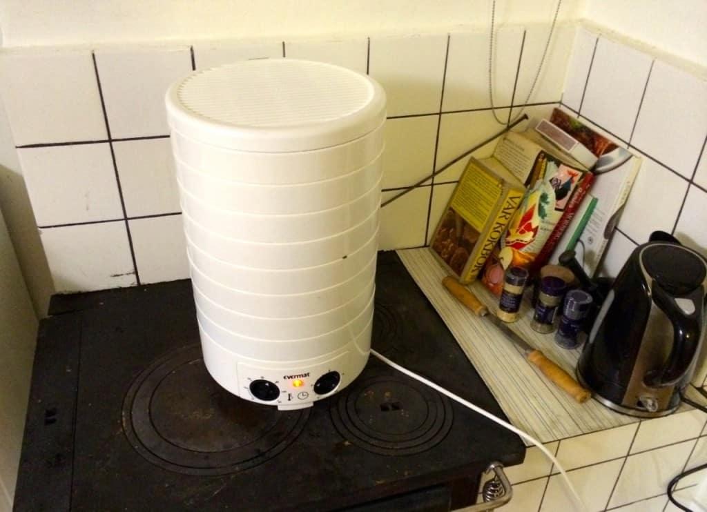 Jag premiärkör min nya torkmaskin med oregano. Svampen väntar på regn men jag har stora planer för den här apparaten.