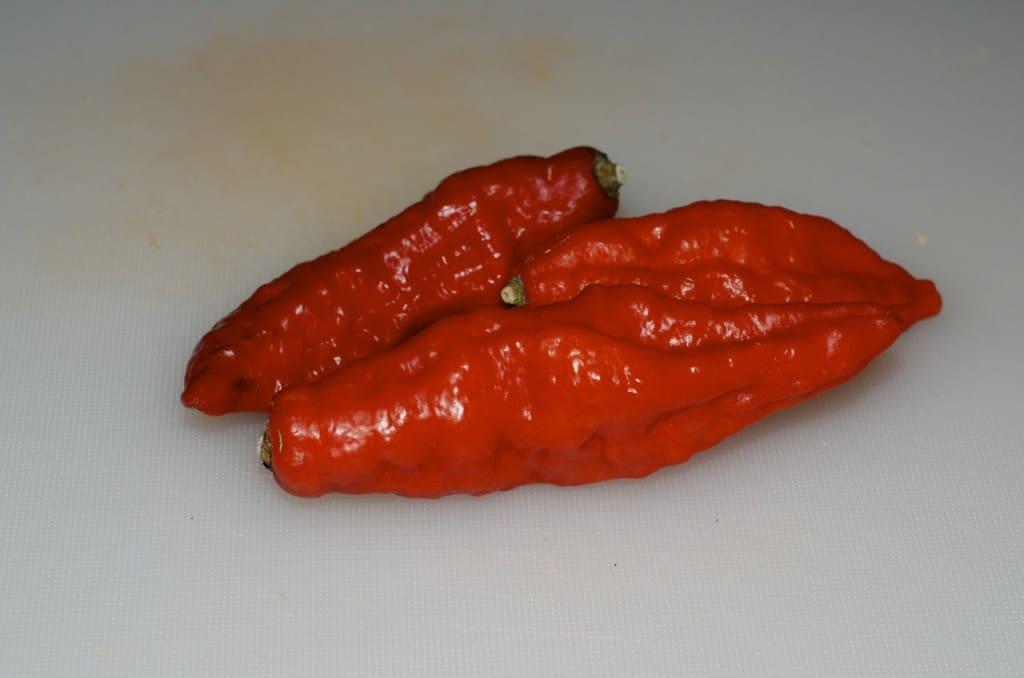Naga Jolokia, också kallad Ghost pepper, var fram till 2012 världens starkaste chilipeppar. mer än 400 gånger starkare än tabascosås. Den efterträddes 2013 av Trinidad moruga scorpion. Den idag starkaste chilipepparen är Carolina Reaper.