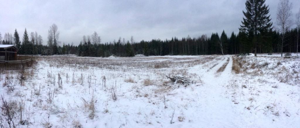 Med lite fantasi kan man se örterna breda ut sig över fältet i doftande rader.