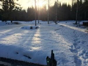 Den öde ön i dammen ska få en broförbindelse och bli tillgänglig även sommartid.