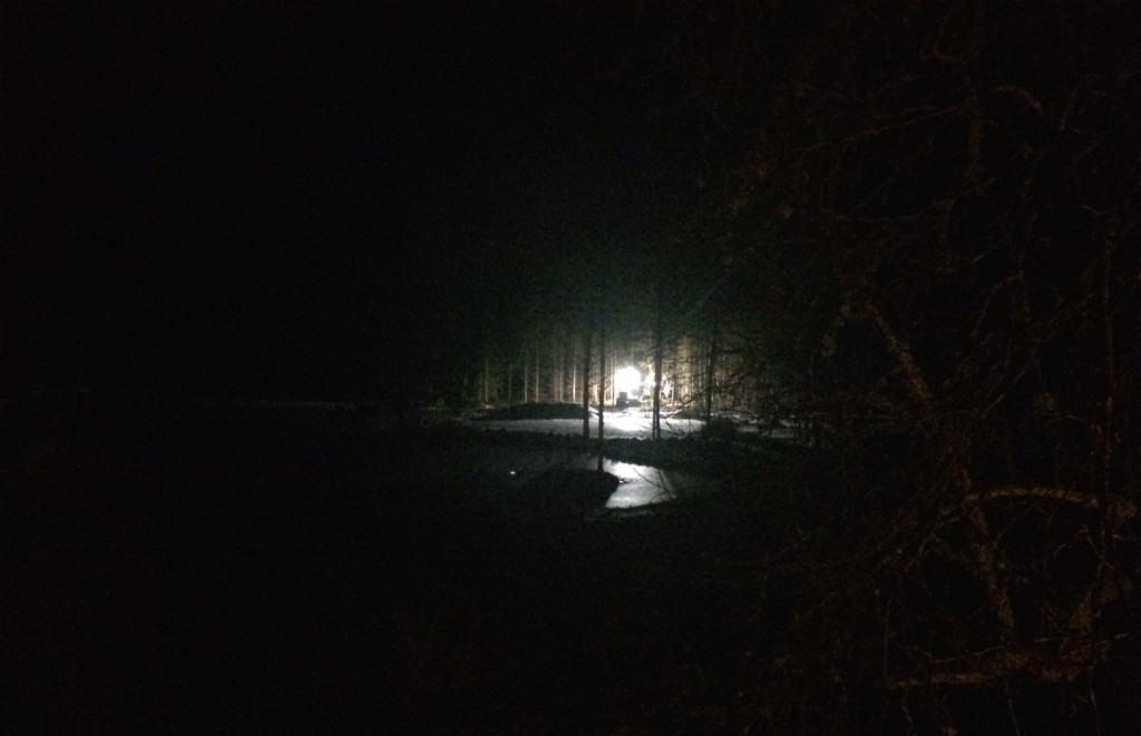 Först bara svaga blänk mellan träden. Men ljuset blev starkare och starkare allt eftersom det kom närmare. Till slut nådde det skogsbrynet – gränsen till mina marker.
