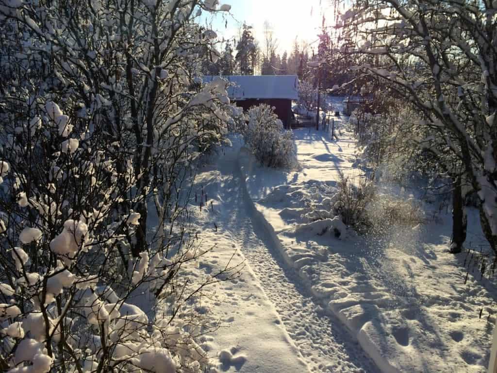 Efter lite trixande har jag fått fart på snöslungan. Fina kanter på gångarna blir det, men det är ingen slunga för nordliga trakter – vid 40 cm är den definitivt ansträngd.