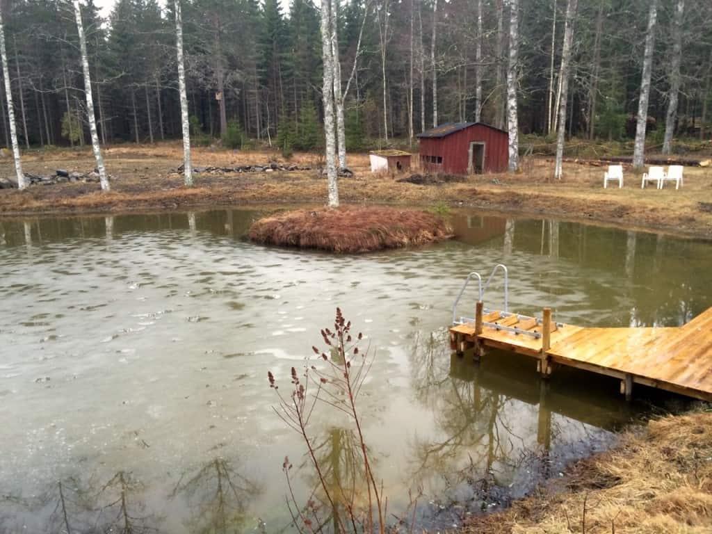 Isen är på rejäl tillbakagång. Det lär dröja innan jag drar på mig badbyxorna men om någon månad kan man börja titta efter vilka fiskar som klarat vintern.
