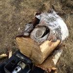 När man klyver en kubb med kvist är det bäst att klyva genom kvisten. Annars är risken stor att man bara flisar av en liten del när kvisten leder bort kraften.