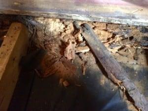 När jag började krafsa på stocken visade det sig att den nästan enbart bestod av pulver.