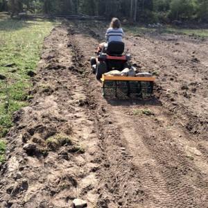 Lilla trädgårdstraktorn och gallervälten är perfekta för ändamålet och har precis rät mått för att trycka till odlingslimpan.