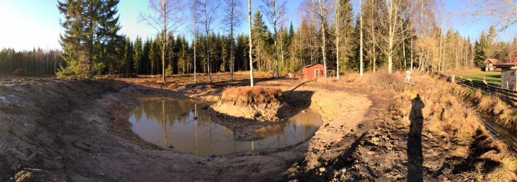 I november 2013, när dammen var nygrävd, såg det mest tragiskt ut. Men tminstone var den stor och djup vilket innebar potential.