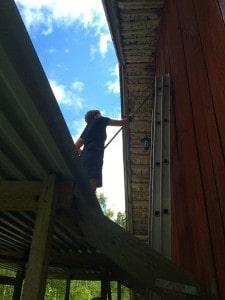 Lena gjorde en utmärkt insats med rödfärgen. Och hon är inte rädd för höjder.