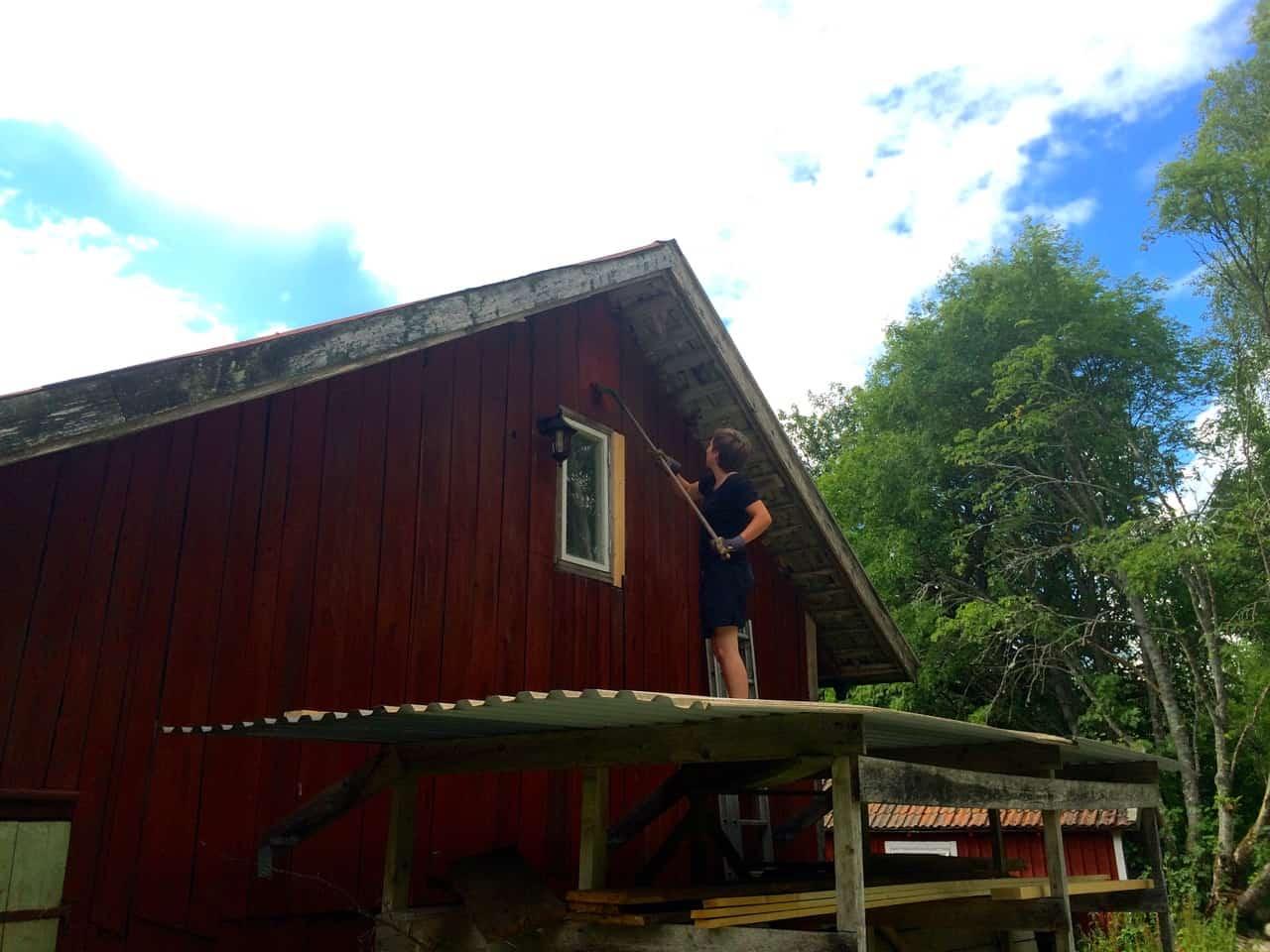För några år sedan fick jag hjälp med att måla om ladugården. Nu är det dags att ta itu med den invändigt. Att renovera ladugård är ett rejält, men tillfredställande projekt. I alla fall på planeringsstadiet.