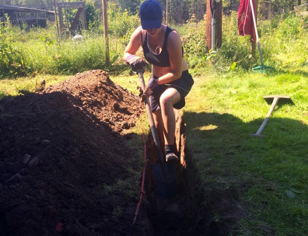 Jag har för närvarande en tysk grävare som idogt arbetar sig fram genom den sörmländska moränen. Men när temperaturen lade sig runt 30 grader fick hon ledigt och kunde ägna sig åt ogräsrensning istället.