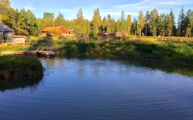 Ett konstant flöde av frisk luft ner till dammen mörkaste vrår skapar dels cirkulation genom att det bildas en vattenpelare dör bottenvattnet stiger till ytan, dels blir vattnet syresatt av de små luftbubblorna.