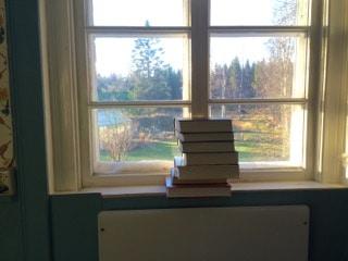Hade en del hårda vindbyar under natten. Prognoserna talade om uppåt 25 m/sek. Mina tejpade innanfönster slet i klisterremsorna så jag använde delar av biblioteket för att minska risken att vakna med ett fönster i sängen.