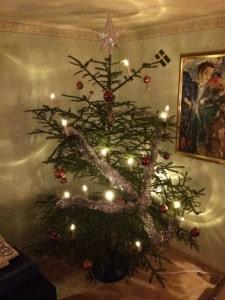 Min första julgran någonsin faktiskt. Pappa och jag gick ut och högg den dagen före julafton. Närproducerad svensk gran måste vara något av det hållbaraste man kan ha i granväg.