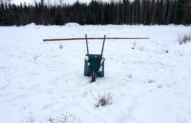 Min mobila skrämma har jag placerat vid blårbärsodlingen. Spåren i snön runt omkring är gjorda av mina lokala rådjur och hjortar.