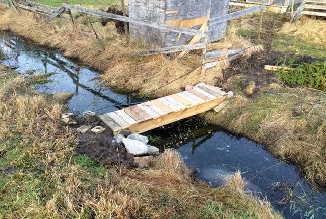 Det här diket är inte bredare än att det går att hoppa över. Men en enkel bro underlättar betydligt – det går nu att köra över med en skottkärra och man besparar sig enstaka våta fötter.