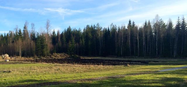 När plogen ändå var kopplad passade jag på att plöja fältet ovanför rabarberodlingen också.