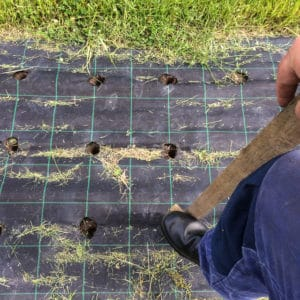 Det ger rätt snabbt att göra planeringsgroparna. Bara marken är fuktig och man tänker på att vrida redskapet när man lyfter det så att gropen inte rasar igen.