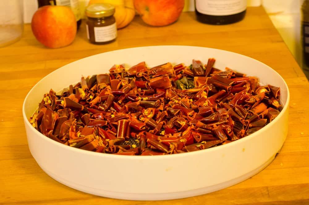 Efter sex timmar i 35 grader har Espeletten torkat ihop och är klar att göras till pulver. Ett utmärkt sätt att bevara chili.