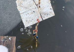 Syrestenarna hänger under en bit vanlig cellplast med en bit galvat stål som tyngd längst ner.
