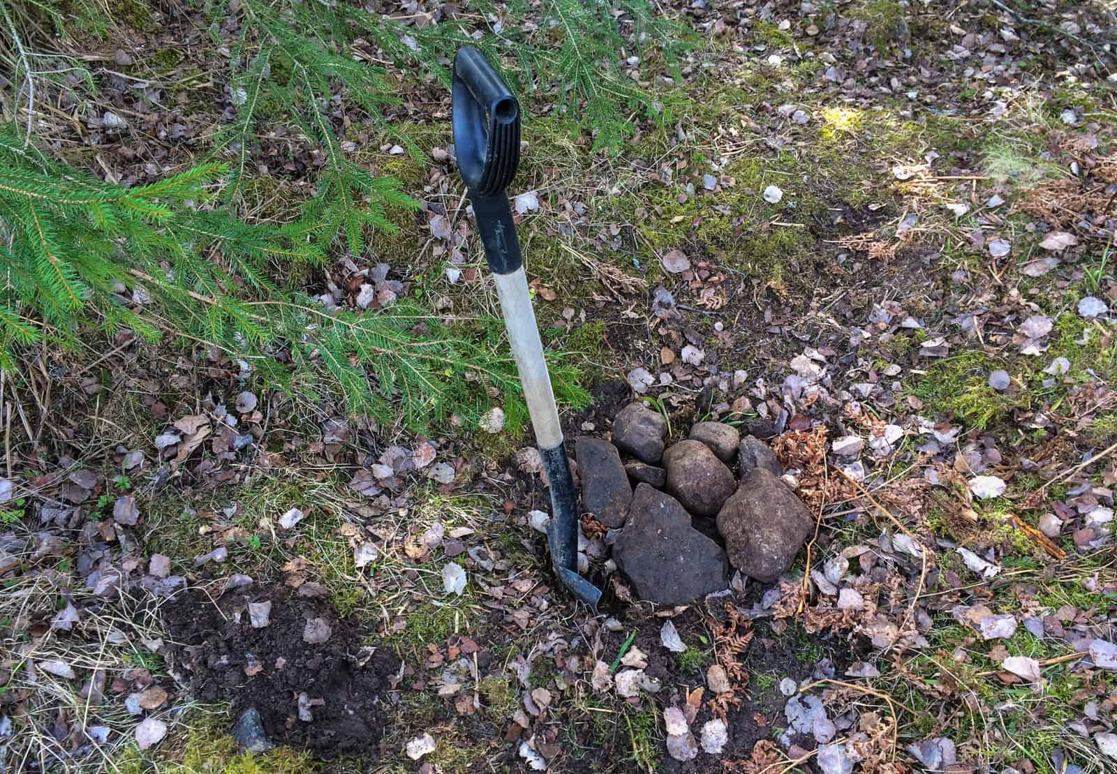 Så tuppkycklingarna får en grav ute i skogen. Vuxna tuppar äter man upp – men de här små stackarna får återgå till naturen.