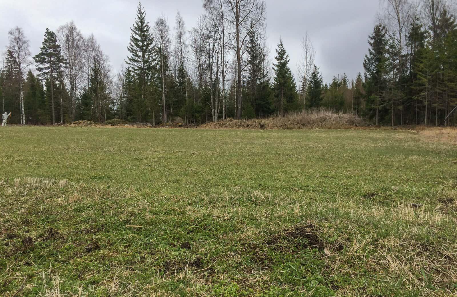 När jag flyttade hit stod det tät granskog här. Nu är det gräs- och klövervall i väntan på framtida odlingsbeslut. När sista skörden är tagen och all annan jordbruksmark är förbrukad – då har jag min kvar.